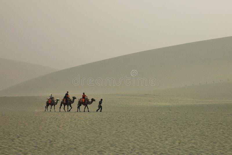 与骆驼的沙漠沙丘在一场温和的沙尘暴期间 库存图片