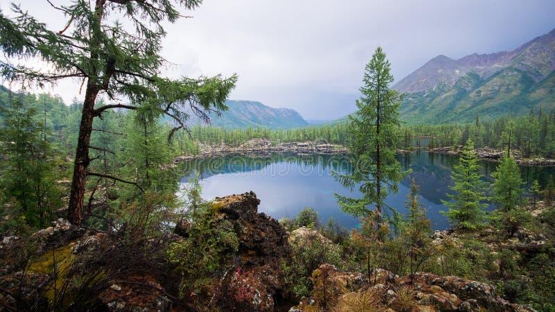 与高山湖的美好的夏天风景 庄严狂放和平安的自然在俄罗斯,东Sayan 免版税库存照片