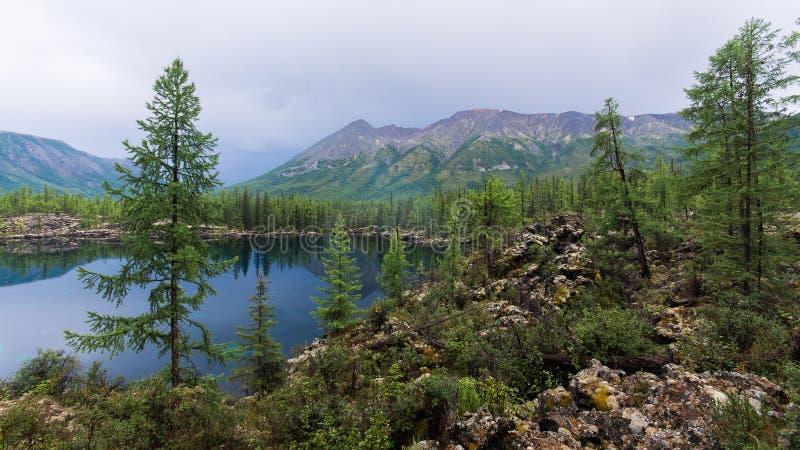 与高山湖的美好的夏天风景 庄严狂放的自然在俄罗斯,东Sayan 免版税库存图片
