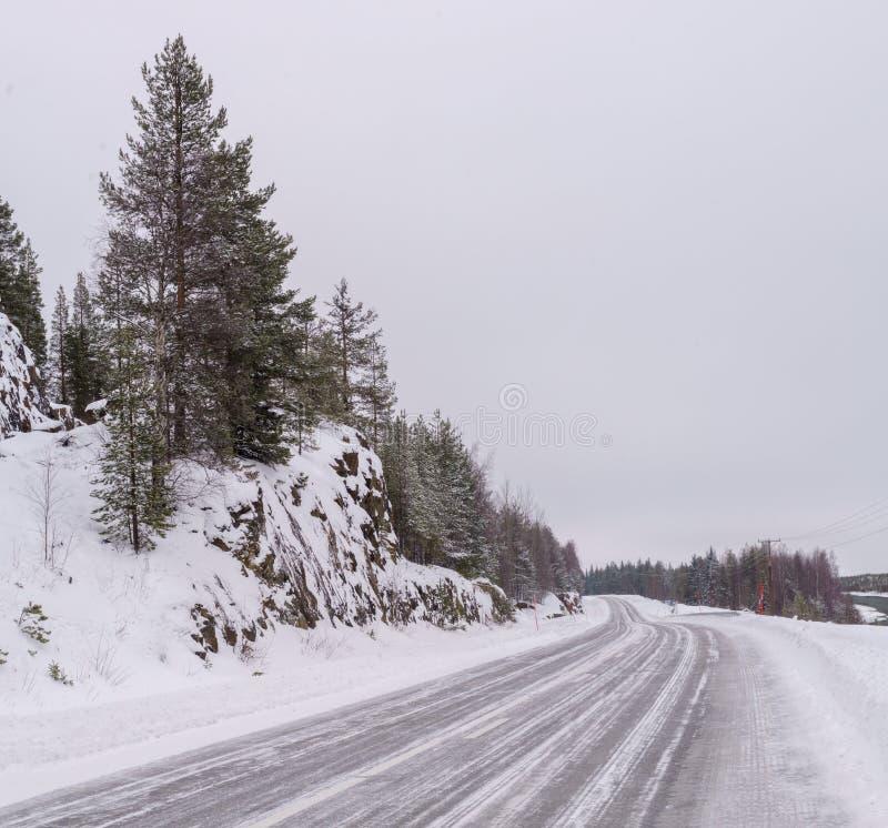 与高速公路路的冬天风景 库存图片