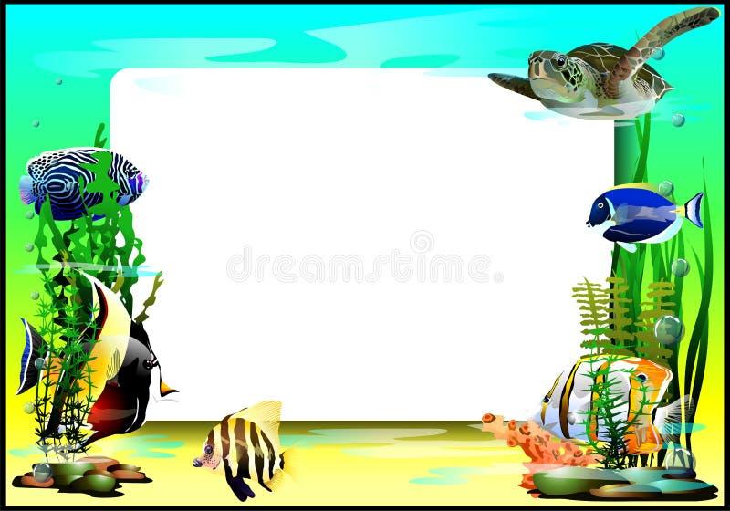 与鱼和乌龟的框架 (传染媒介) 皇族释放例证