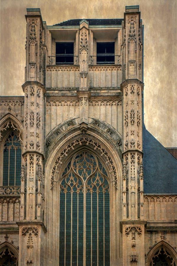 与鲁汶,比利时圣伯多禄教会的老照片  库存图片