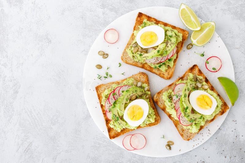与鲕梨鳄梨调味酱捣碎的鳄梨酱、新鲜的萝卜、熟蛋、chia和南瓜籽的三明治 饮食早餐可口和健康植物b 免版税库存图片
