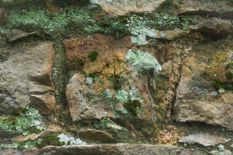 与鲜绿色青苔,模子的石头 免版税库存照片