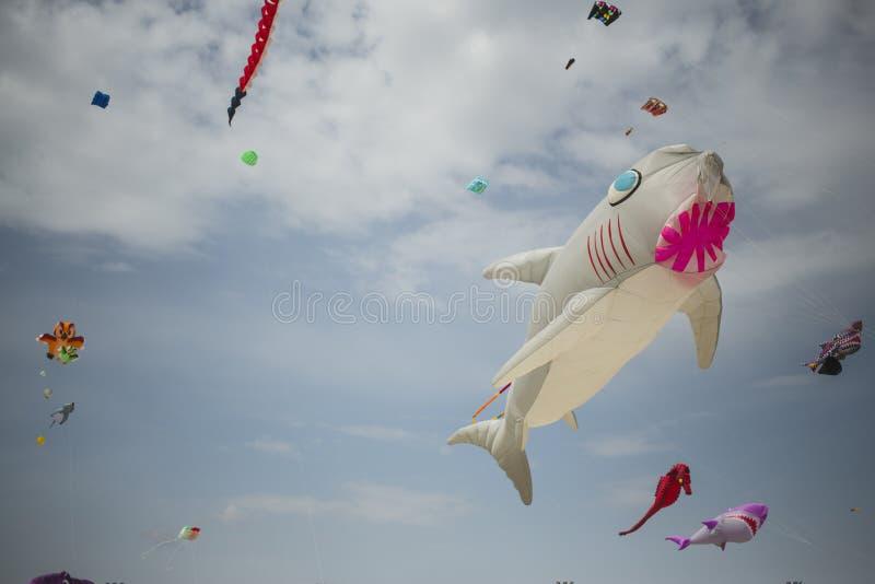 与鲨鱼形状的大风筝在天空蔚蓝 图库摄影