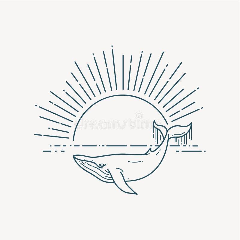 与鲸鱼和日出的现代平的线性传染媒介例证 库存例证