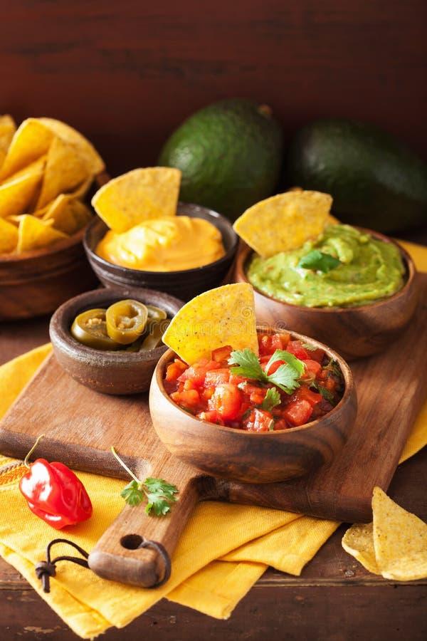与鳄梨调味酱捣碎的鳄梨酱、辣调味汁和乳酪d的墨西哥烤干酪辣味玉米片玉米片 免版税库存照片