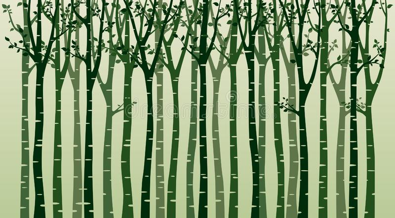 与鸟剪影的桦树在绿色背景 皇族释放例证