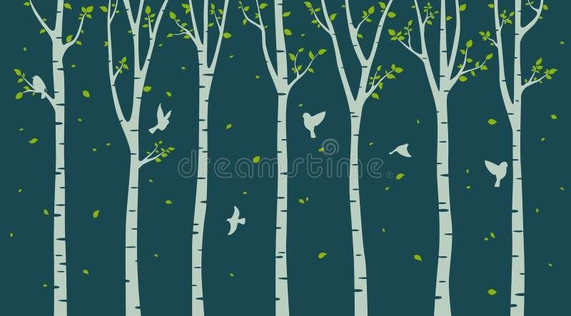 与鸟剪影的桦树在绿色背景 库存例证