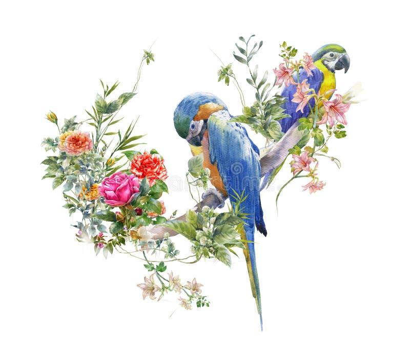 与鸟和花的水彩绘画,在白色背景例证 皇族释放例证