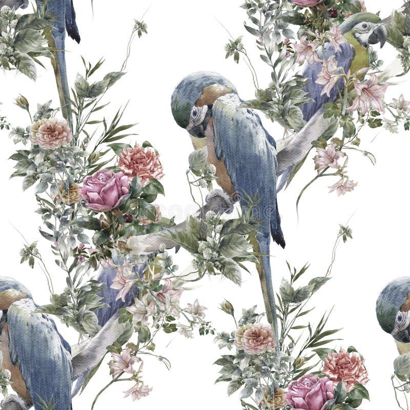 与鸟和花,在白色背景的无缝的样式的水彩绘画 库存例证