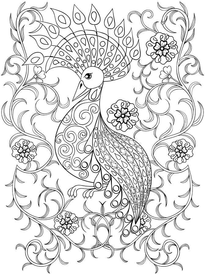 与鸟在花, zentangle illustartion鸟的着色页 向量例证