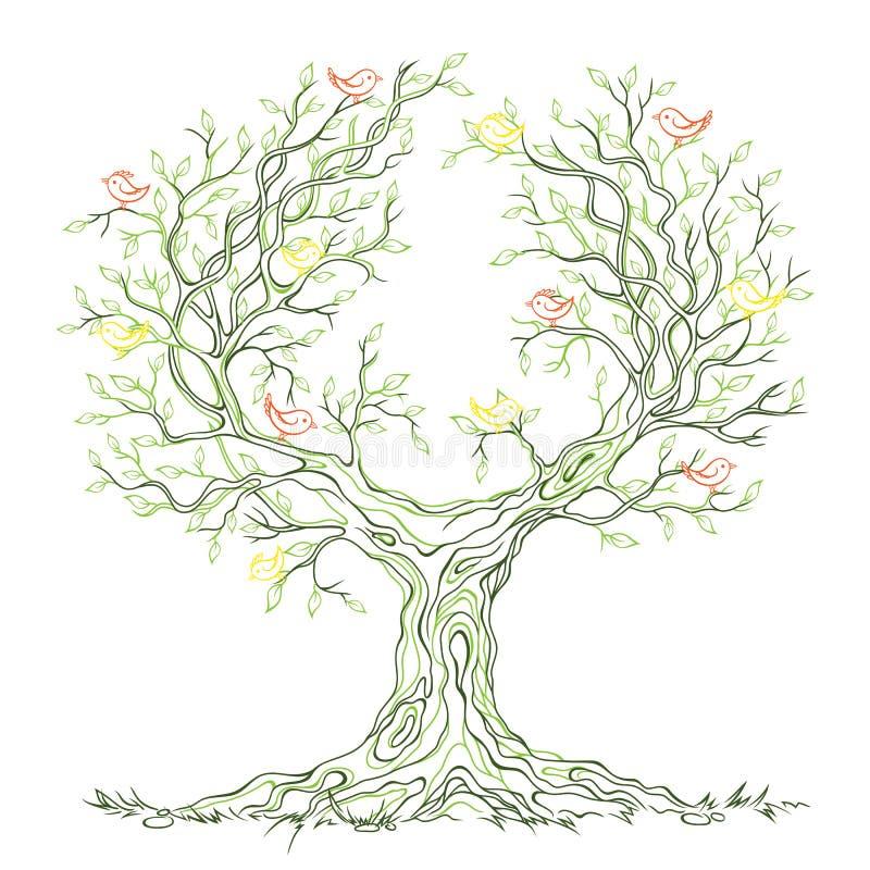 与鸟的向量图形绿色多枝结构树 皇族释放例证