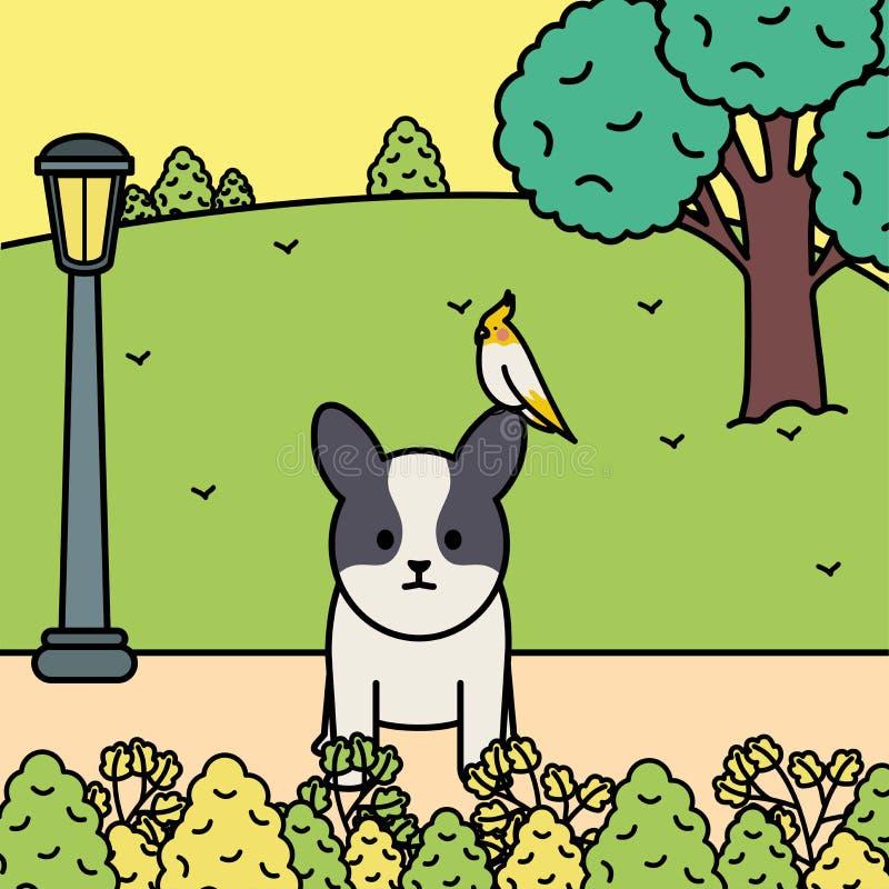 与鸟的小犬座在公园 皇族释放例证