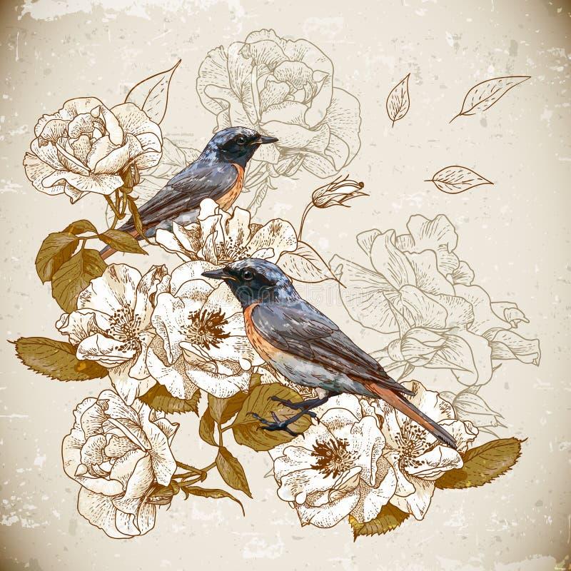 与鸟的葡萄酒花卉背景 皇族释放例证