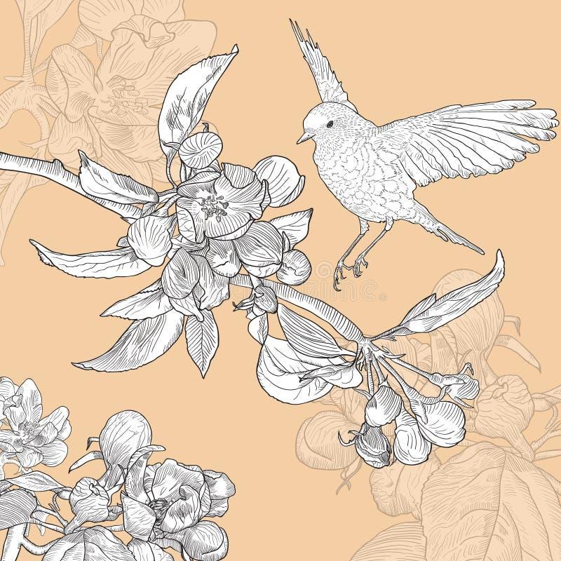 与鸟的葡萄酒花卉贺卡和 皇族释放例证