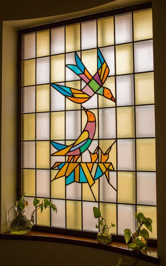 与鸟设计的污迹玻璃窗 免版税库存图片