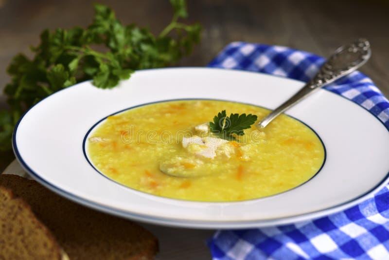 与鸡和油煎的菜的小米汤 免版税库存照片