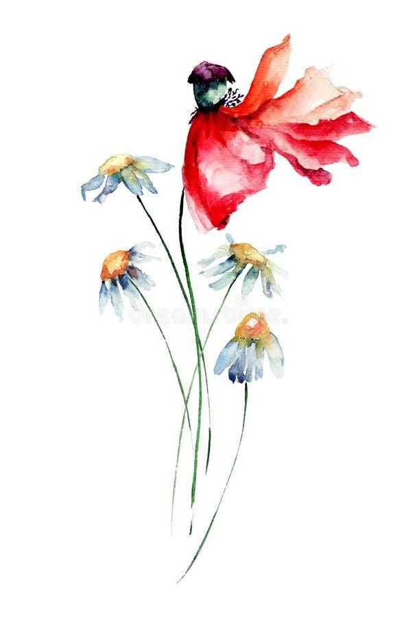 与鸦片和春黄菊的原始的花卉背景开花 向量例证