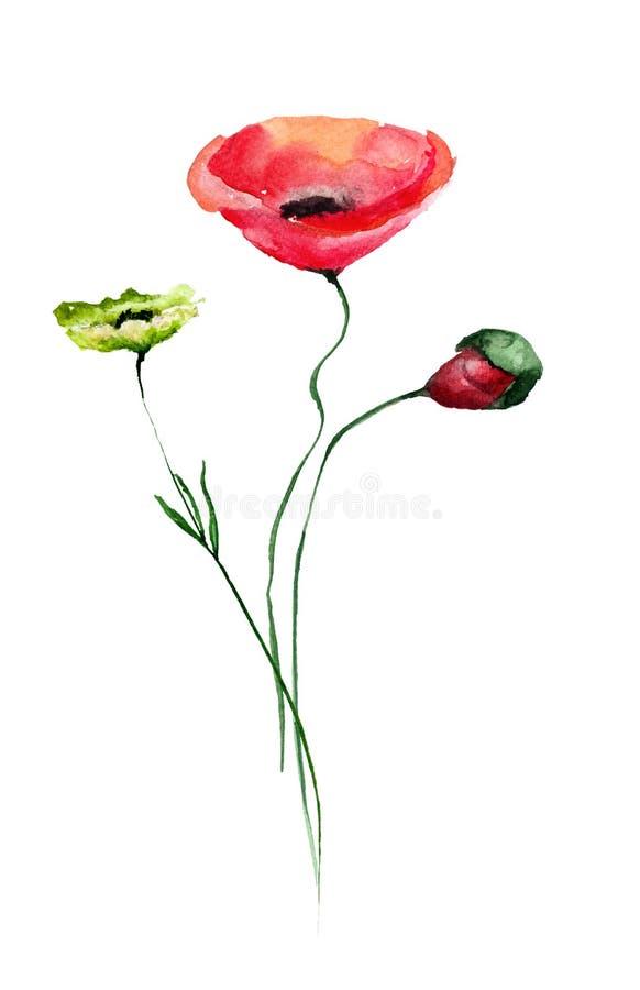 与鸦片花的五颜六色的野花 向量例证