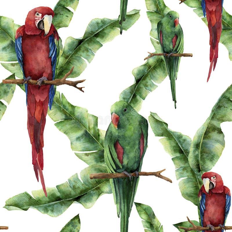 与鹦鹉和香蕉棕榈叶的水彩无缝的样式 手画红和绿的金刚鹦鹉和棕榈分支 库存例证