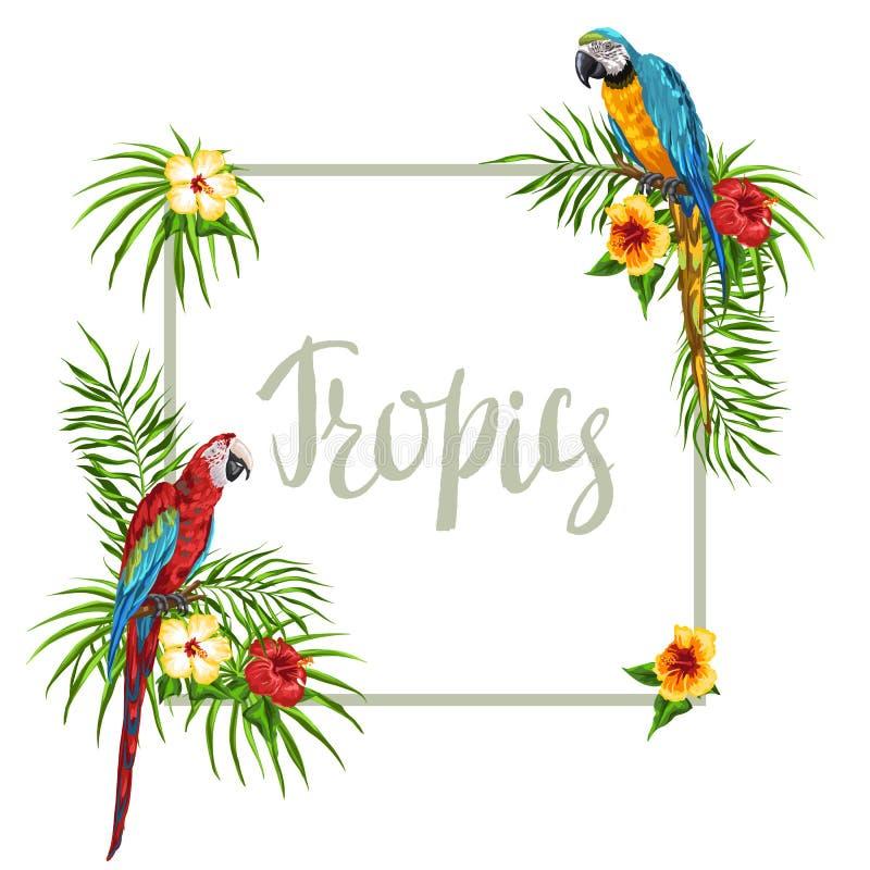 与鹦鹉的热带框架 皇族释放例证