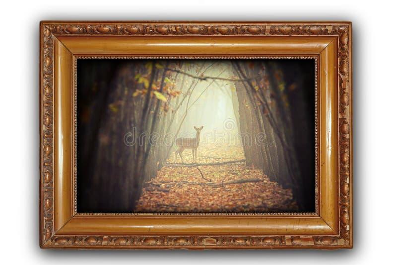 与鹿的美好的图象在木制框架 免版税库存图片