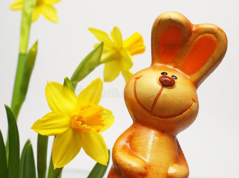 与黄水仙的复活节兔子 免版税库存照片