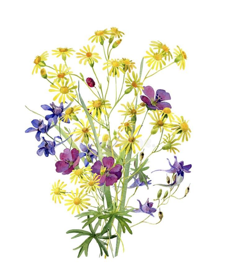 与黄色水彩花的花束 库存例证