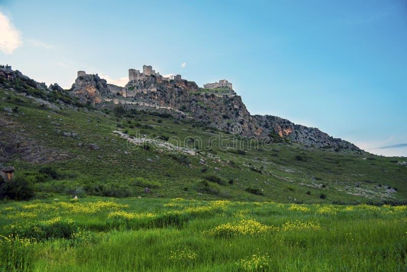 与黄色花的古老蛇城堡'Yilankale'摄影和在阿达纳杰伊汉省的天空蔚蓝背景在土耳其 免版税库存照片