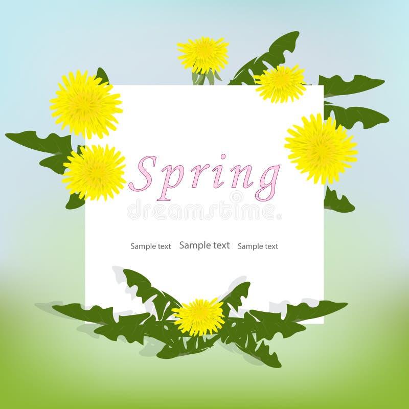 与黄色蒲公英花和叶子的春天背景 库存例证