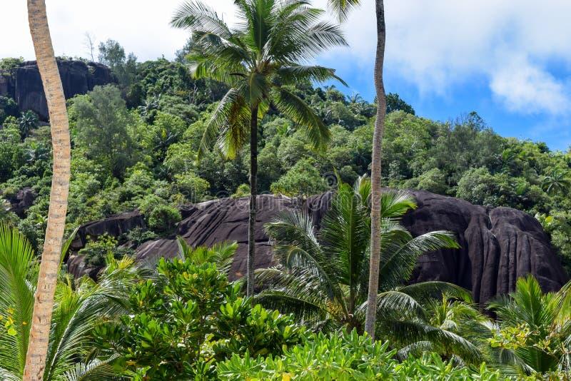 与黑岩石的塞舌尔群岛风景 库存图片