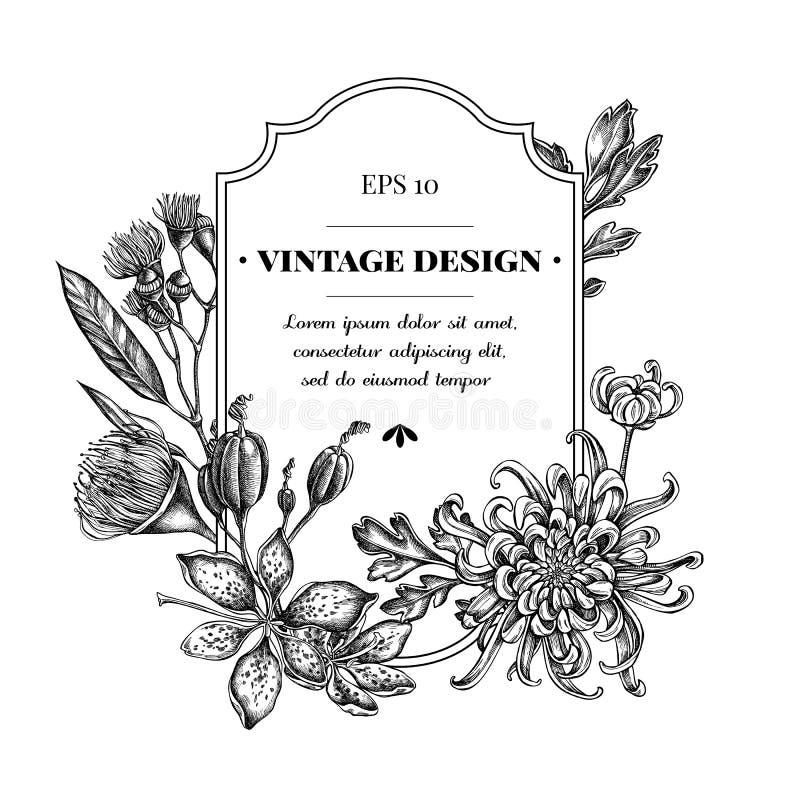 与黑白日本菊花,黑莓百合,玉树花的徽章设计 皇族释放例证