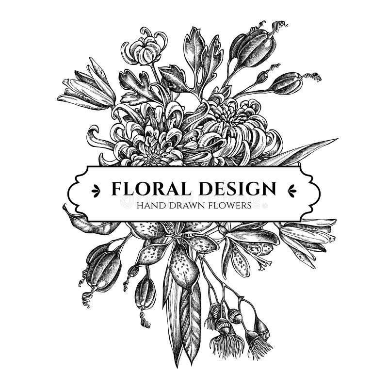 与黑白日本菊花,黑莓百合,玉树花的百花香设计 皇族释放例证