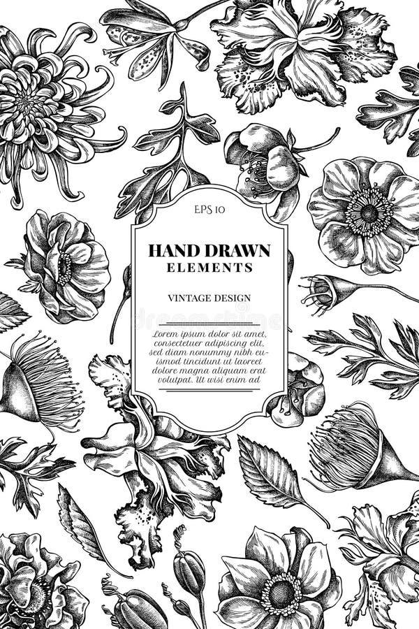 与黑白日本菊花,黑莓百合,玉树花,银莲花属,虹膜japonica的卡片设计 向量例证