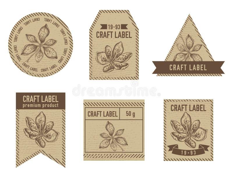与黑莓百合手拉的例证的工艺标签 库存例证