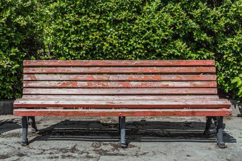 与黑wrought-iron腿的一条老木被绘的棕色颜色美丽的长凳是由走道在灌木的一个公园 免版税库存照片