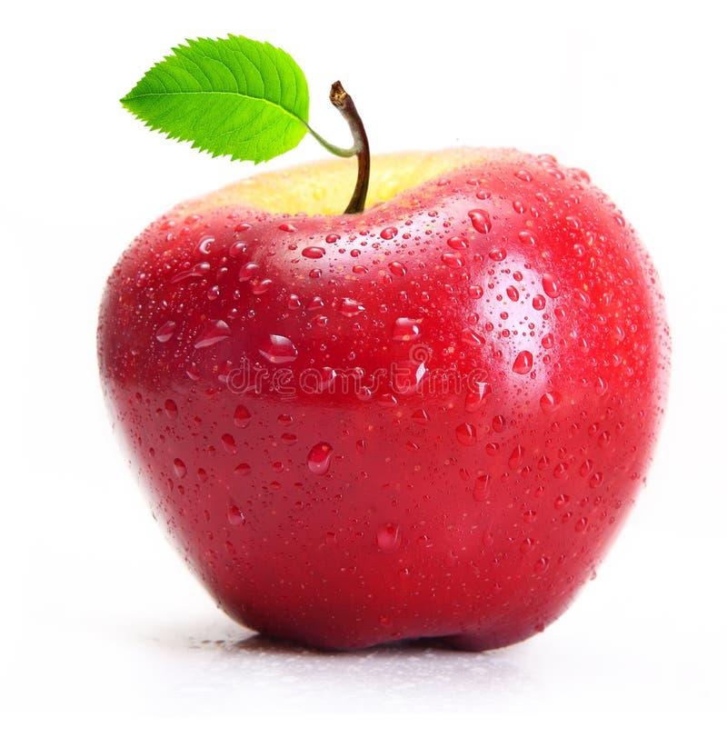 与水下落的红色苹果  库存图片