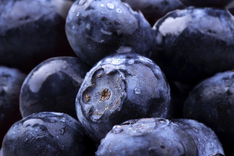 与水下落的蓝色莓果 图库摄影