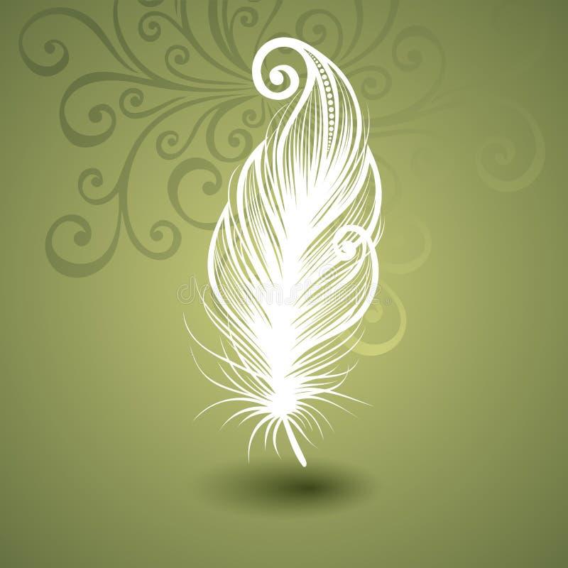 与绝世的羽毛的模板在华丽背景中 向量例证