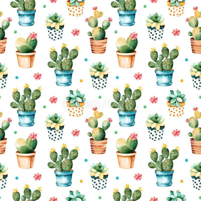 与仙人掌植物和多汁植物的无缝的水彩纹理罐的 向量例证