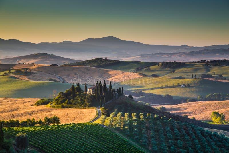 与绵延山和谷的风景托斯卡纳风景在日出 库存图片