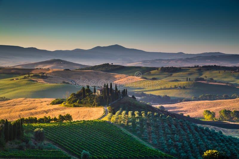 与绵延山和谷的风景托斯卡纳风景在日出 库存照片