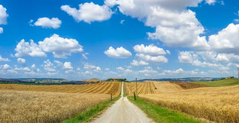 与绵延山的风景托斯卡纳风景在Val d'Orcia,意大利 库存图片
