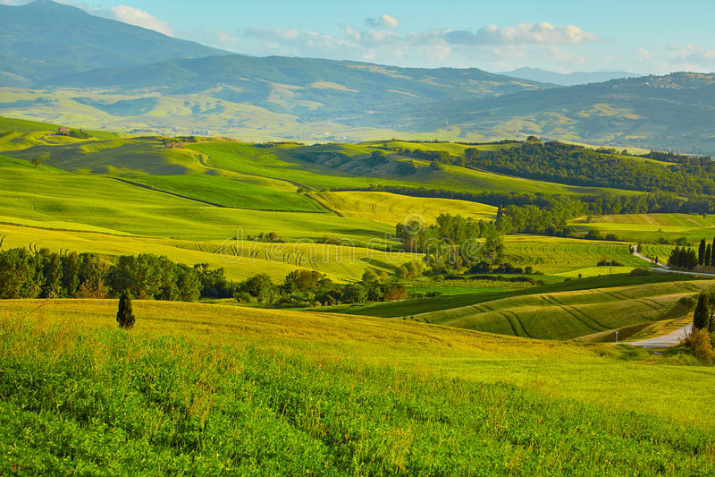 与绵延山的风景托斯卡纳风景 免版税库存图片