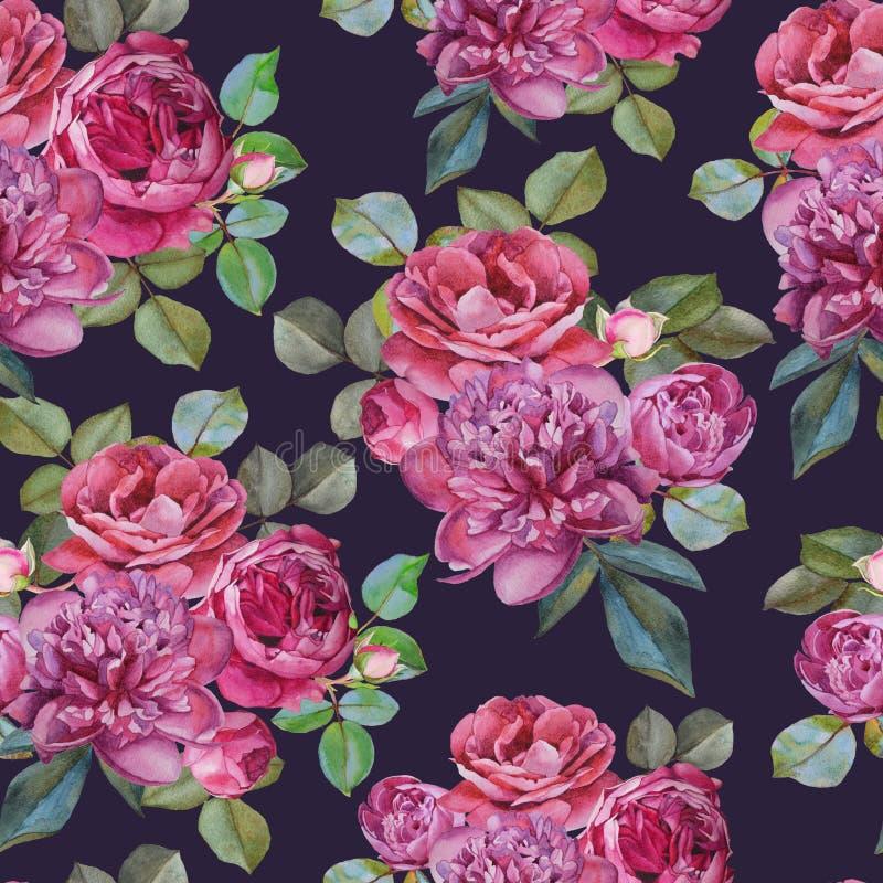 与水彩桃红色玫瑰和牡丹的花卉无缝的样式 皇族释放例证