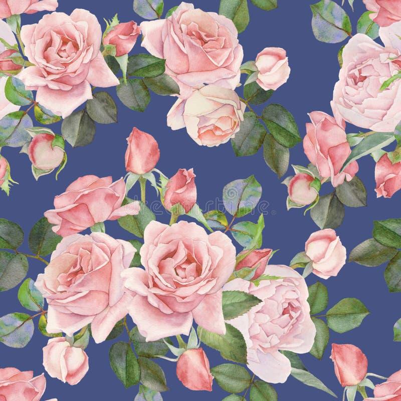 与水彩桃红色玫瑰的花卉无缝的样式在蓝色背景 皇族释放例证