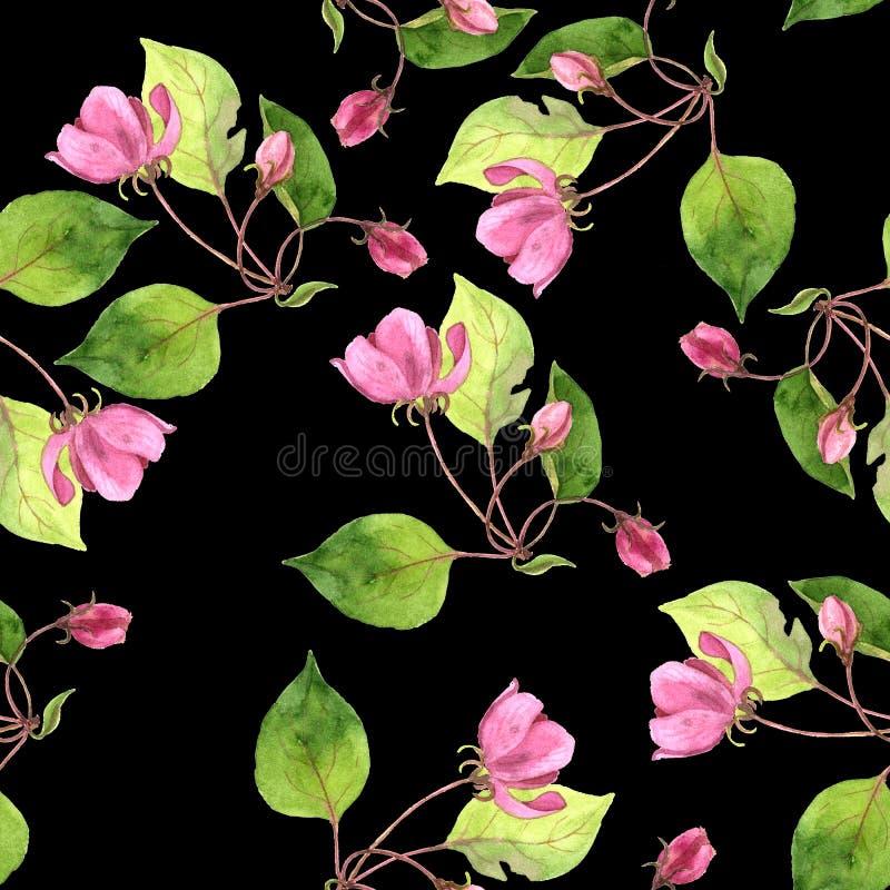 与水彩桃红色苹果树的无缝的样式开花 库存照片