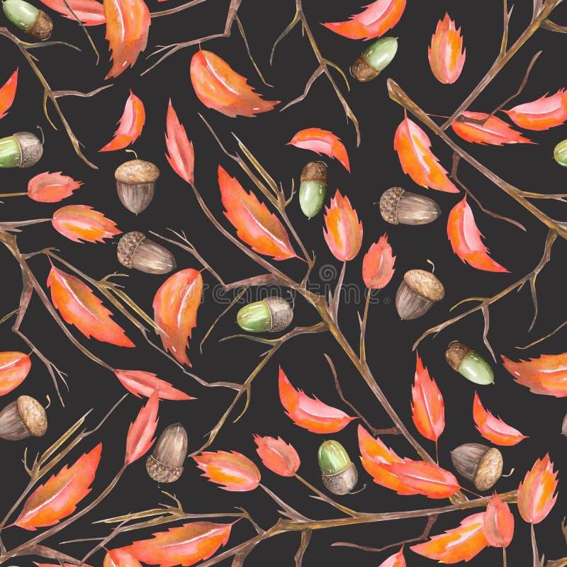 与水彩森林橡木橡子和红色秋叶的花饰的一个无缝的样式在分支 库存例证