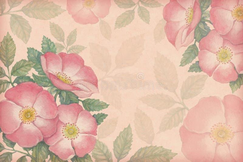与水彩狗玫瑰的艺术性的背景 库存例证